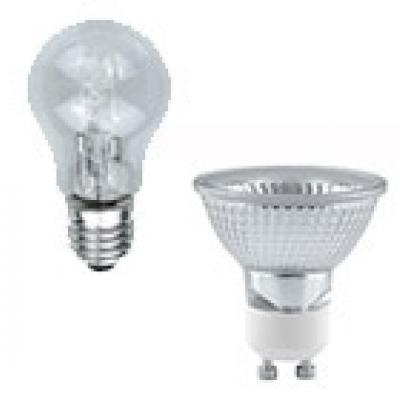 Light Bulbs & Lamps